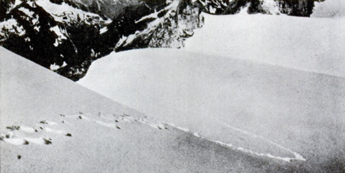 The famous Frank S. Smythe 1937 photograph of what were claimed to be Yeti footprints; but sadly, no Yeti.