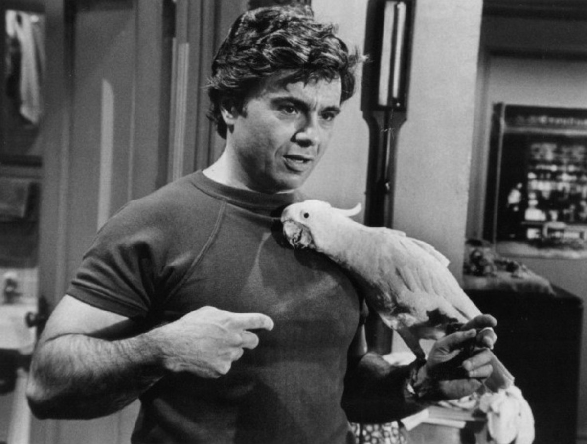 Robert Blake as Tony Baretta with his cockatoo named Fred.
