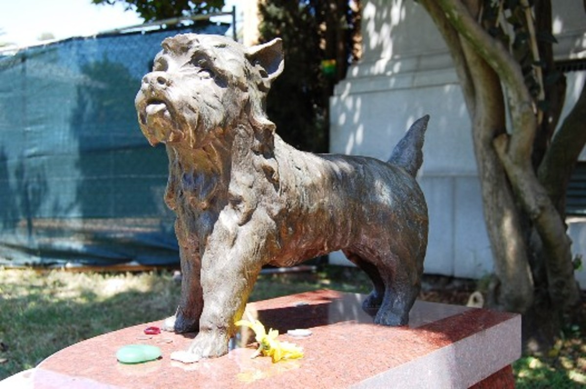 Toto Memorial at Hollywoodland Cemetery
