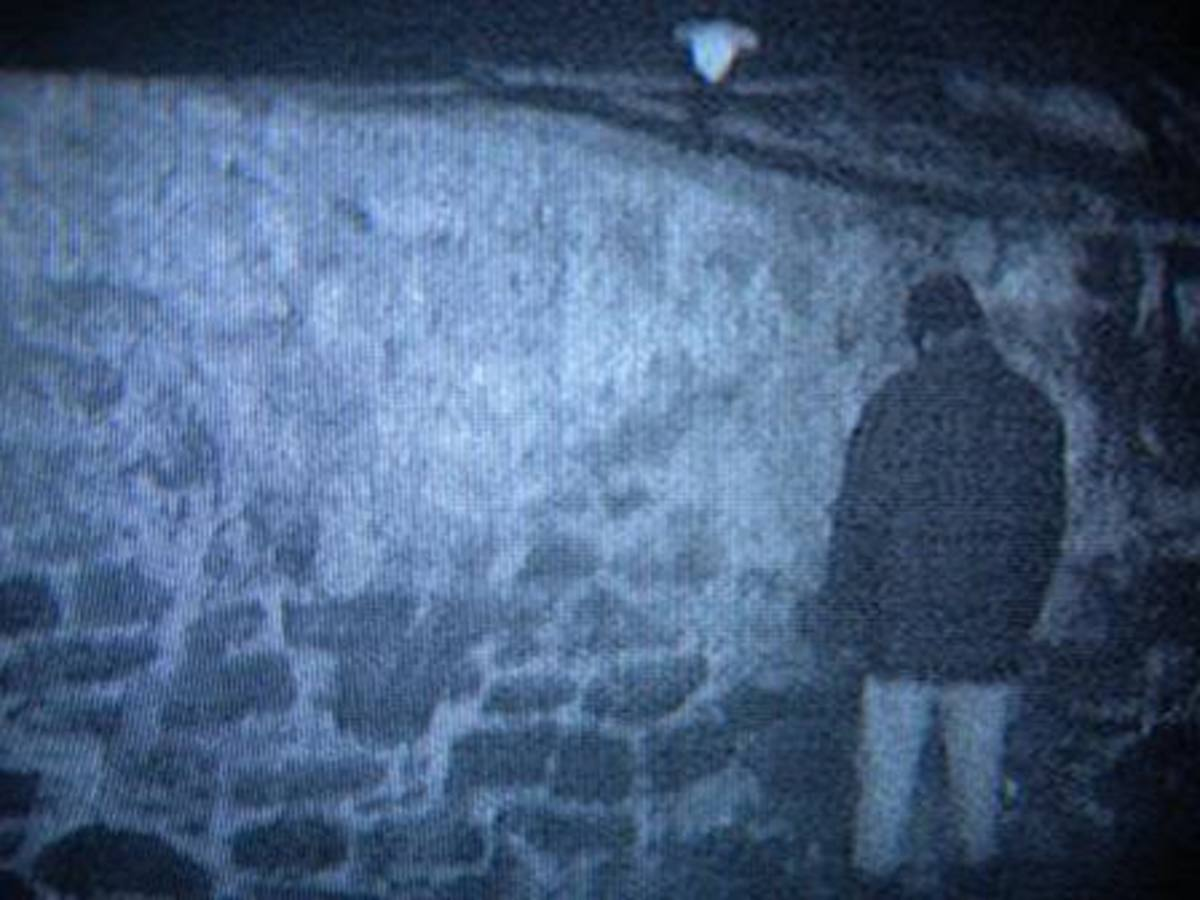 The Blair Witch Project- let Mikey try it, he hates everything about this hovel