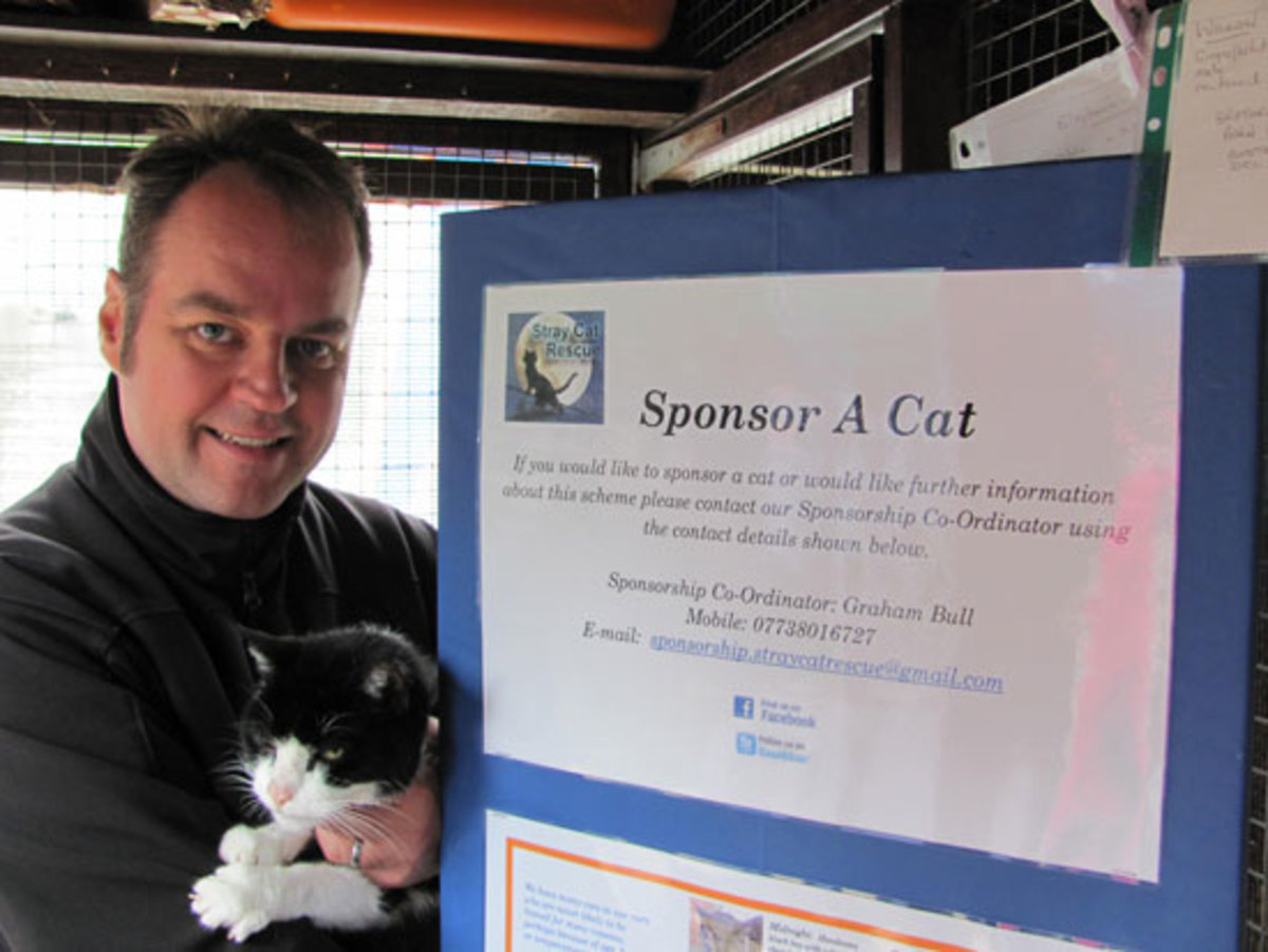 Simon Tofield, through the love of his own rescued felines, has a soft spot for strays. He has started a Stray Cat Rescue and Sponsor-a Cat Program which helps to fund care for sick and needy cats.