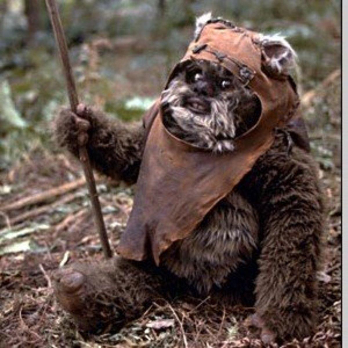 An Ewok in its natural habitat