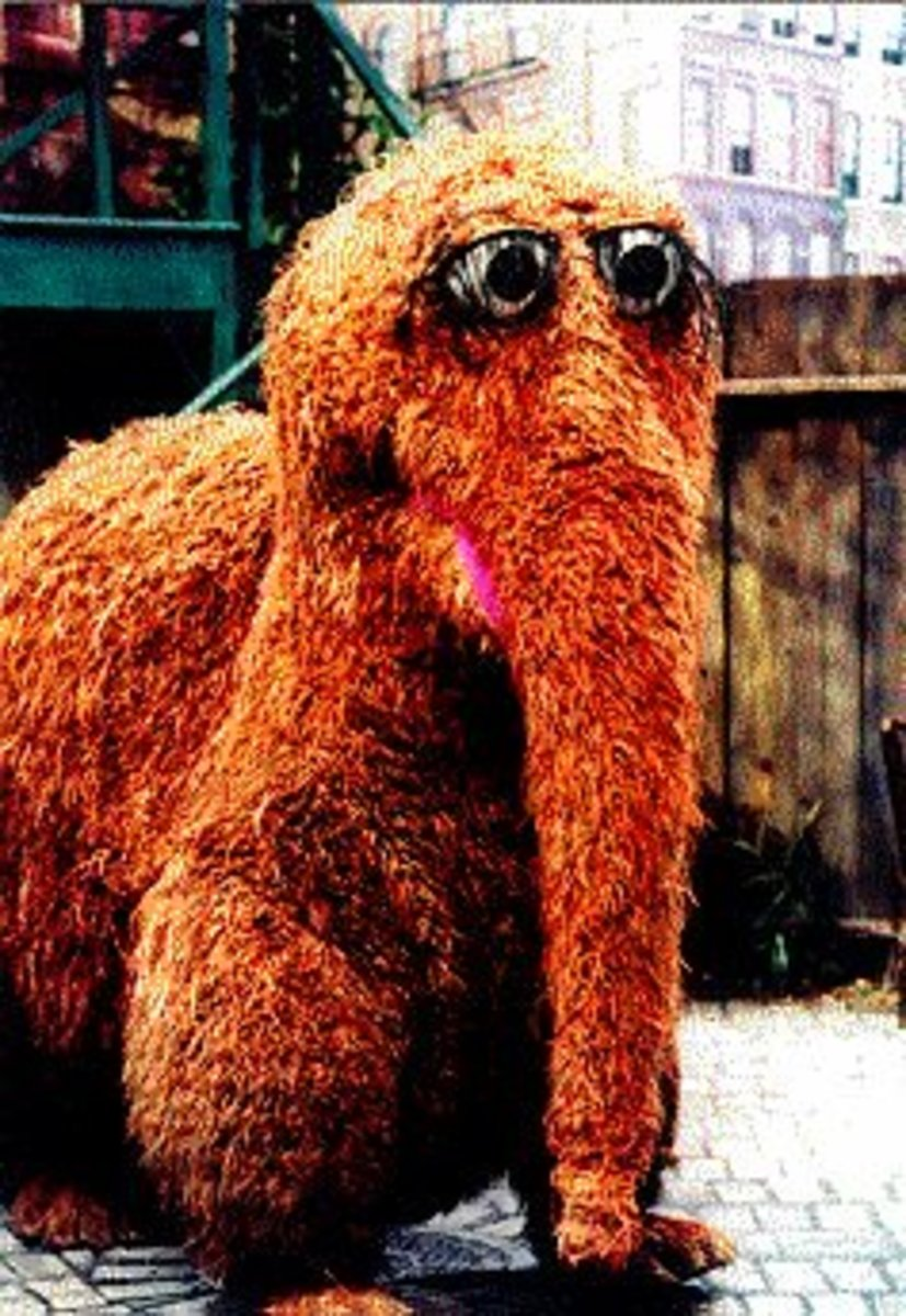 Hi kids! My name is Aloysius Snuffleupagus, but you can call me Snuffy!