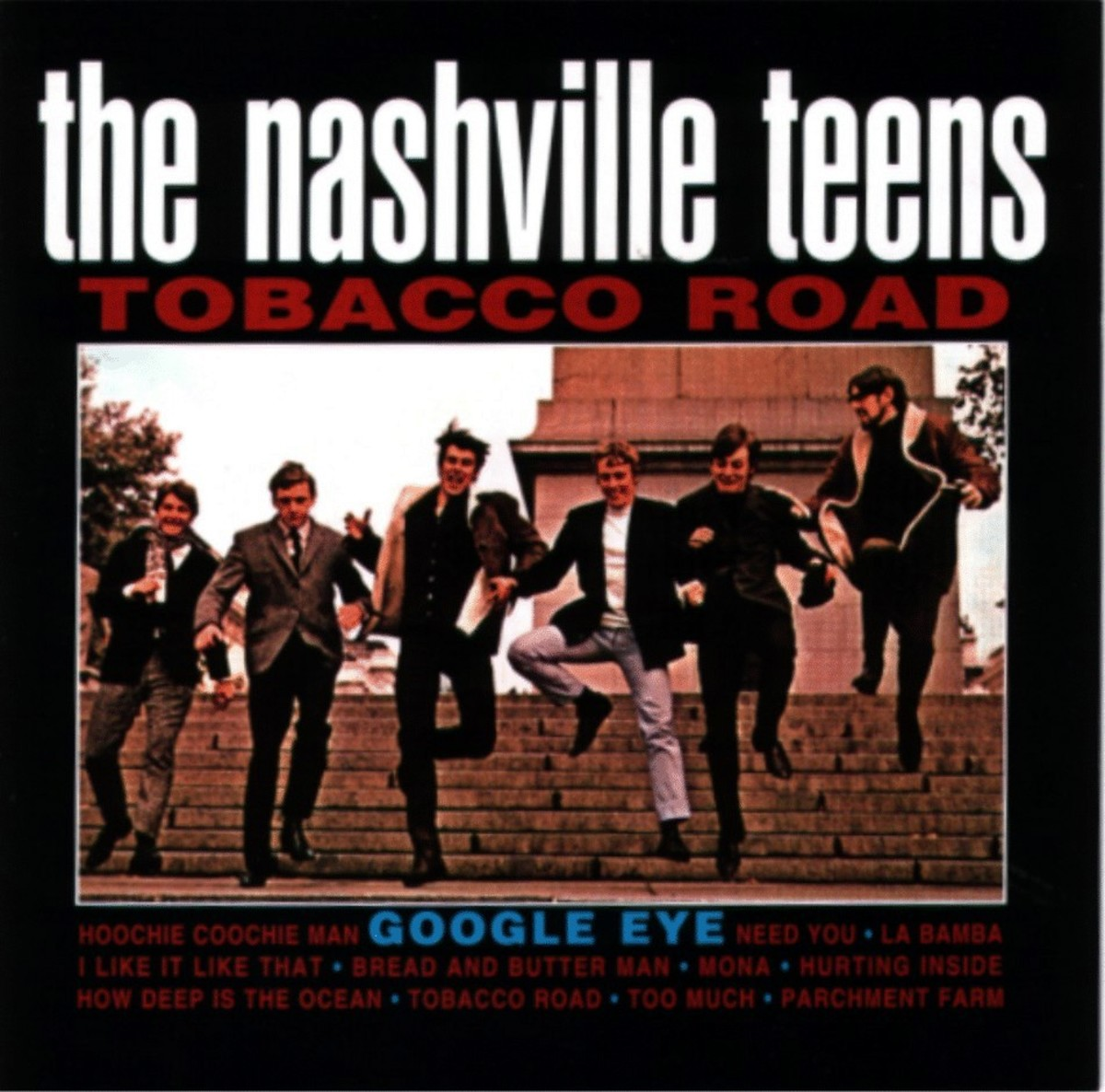 Tobacco Road by The Nashville Teens
