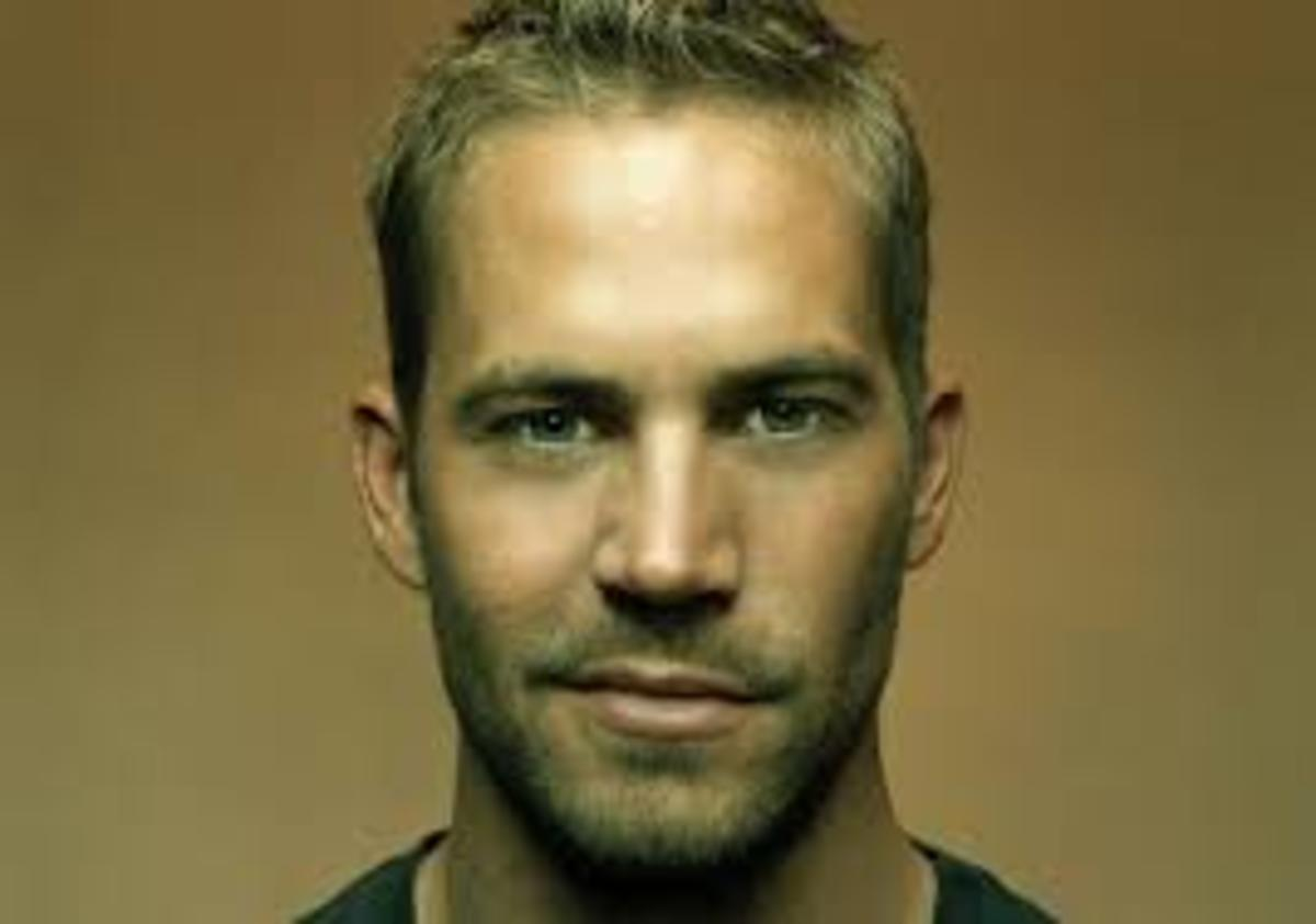 Paul Walker Smirk Photo