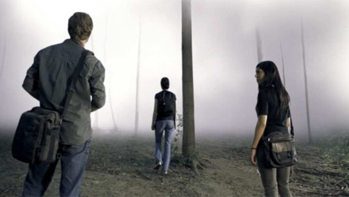 What lies in the fog?