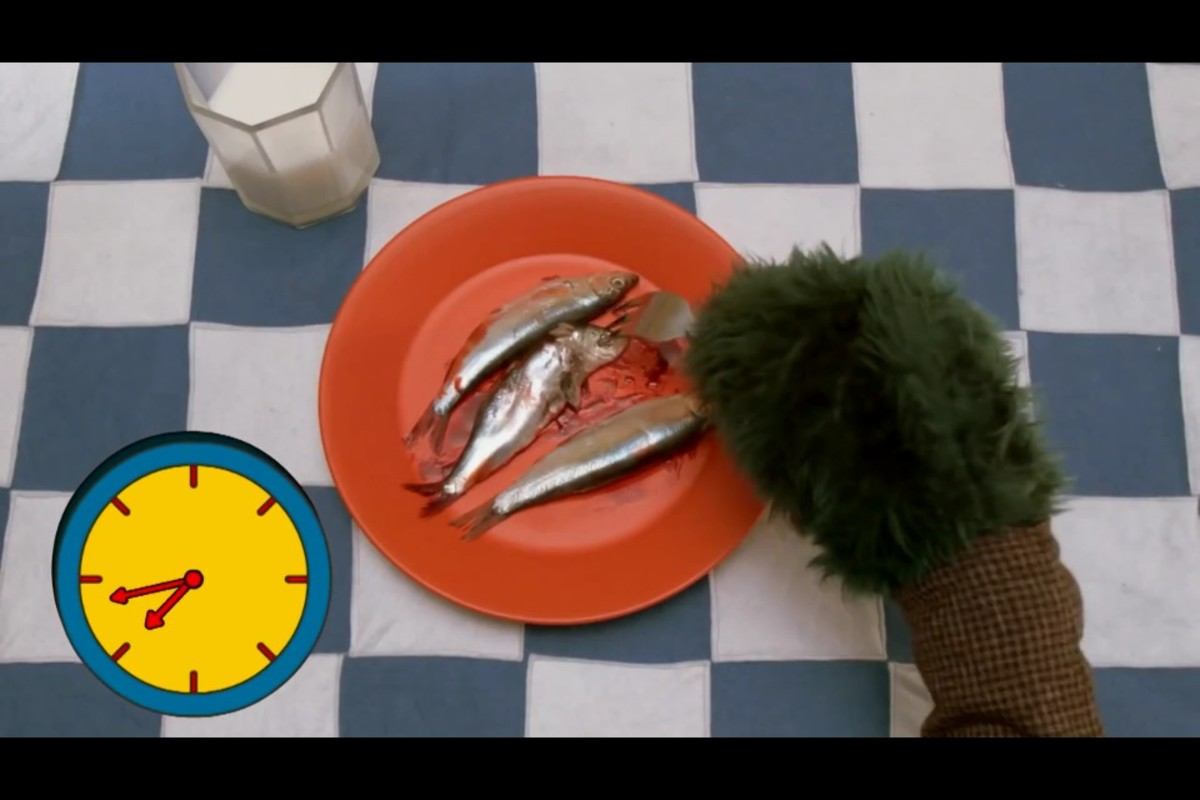 Why's there fish everywhere?