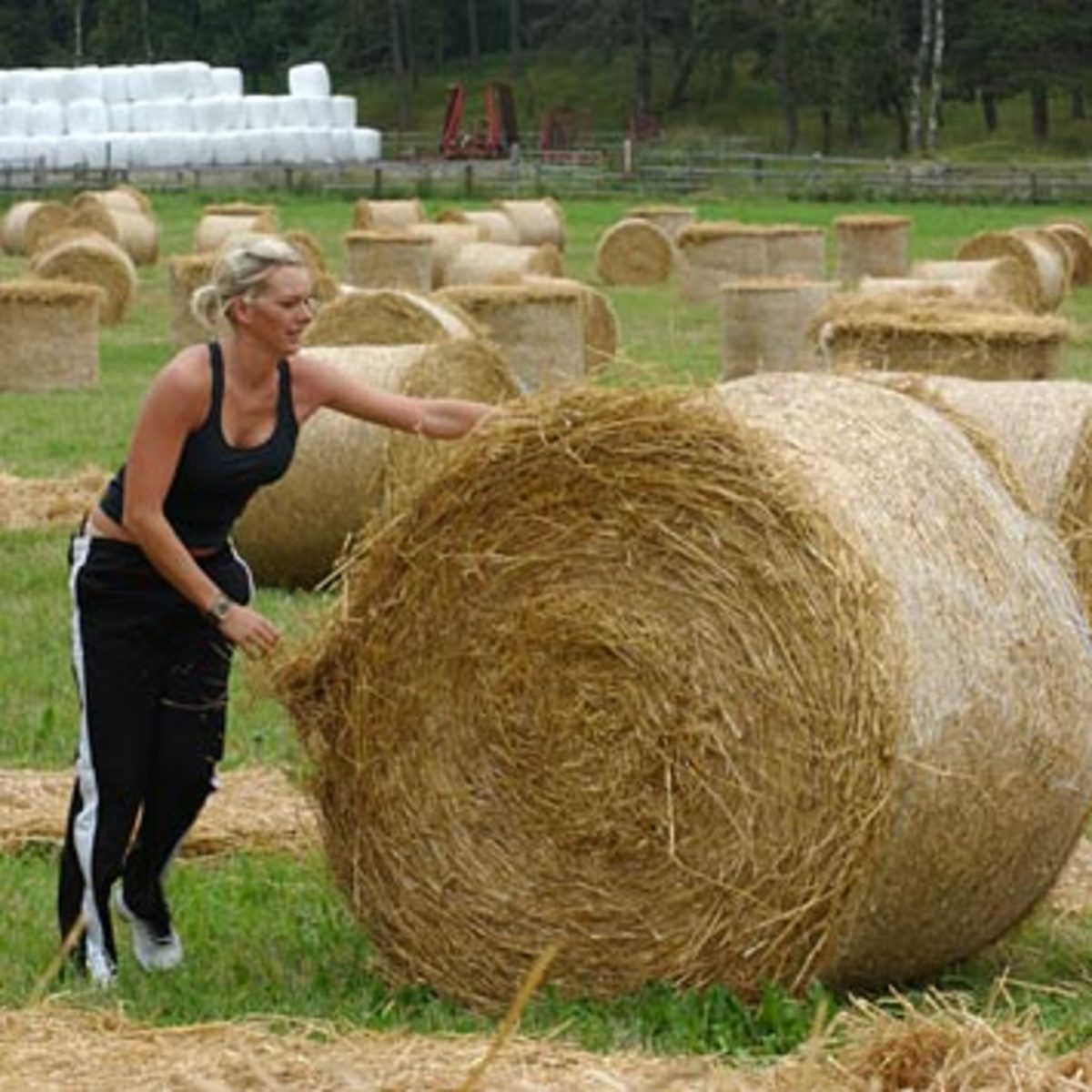 Lena unrolls one of her many, many hay bales.