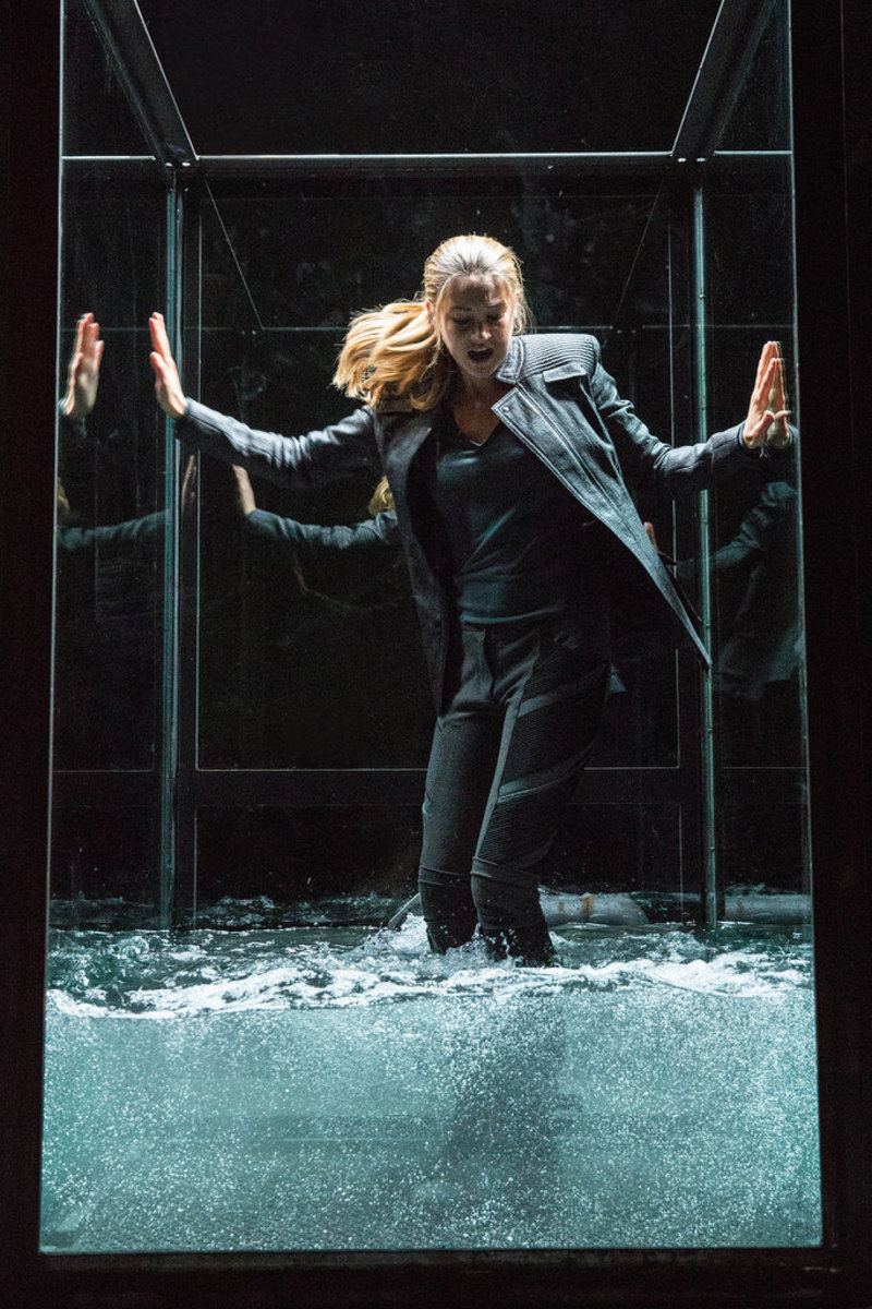 Image from: www.popsugar.com/entertainment/Divergent-Movie-Pictures-30511040?stream_view=1#photo-33897874