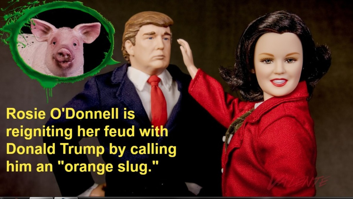 After coming out, Rosie O'Donnell became more outspoken, controversial, and combative.