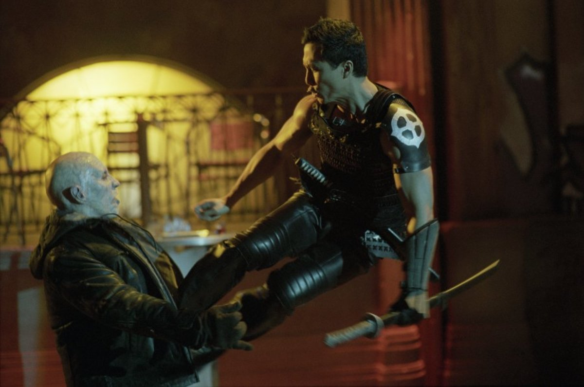 Donnie Yen also tried to break into American success during this time.  Blade 2 was one of his roles.  The movie didn't showcase much of his abilities.