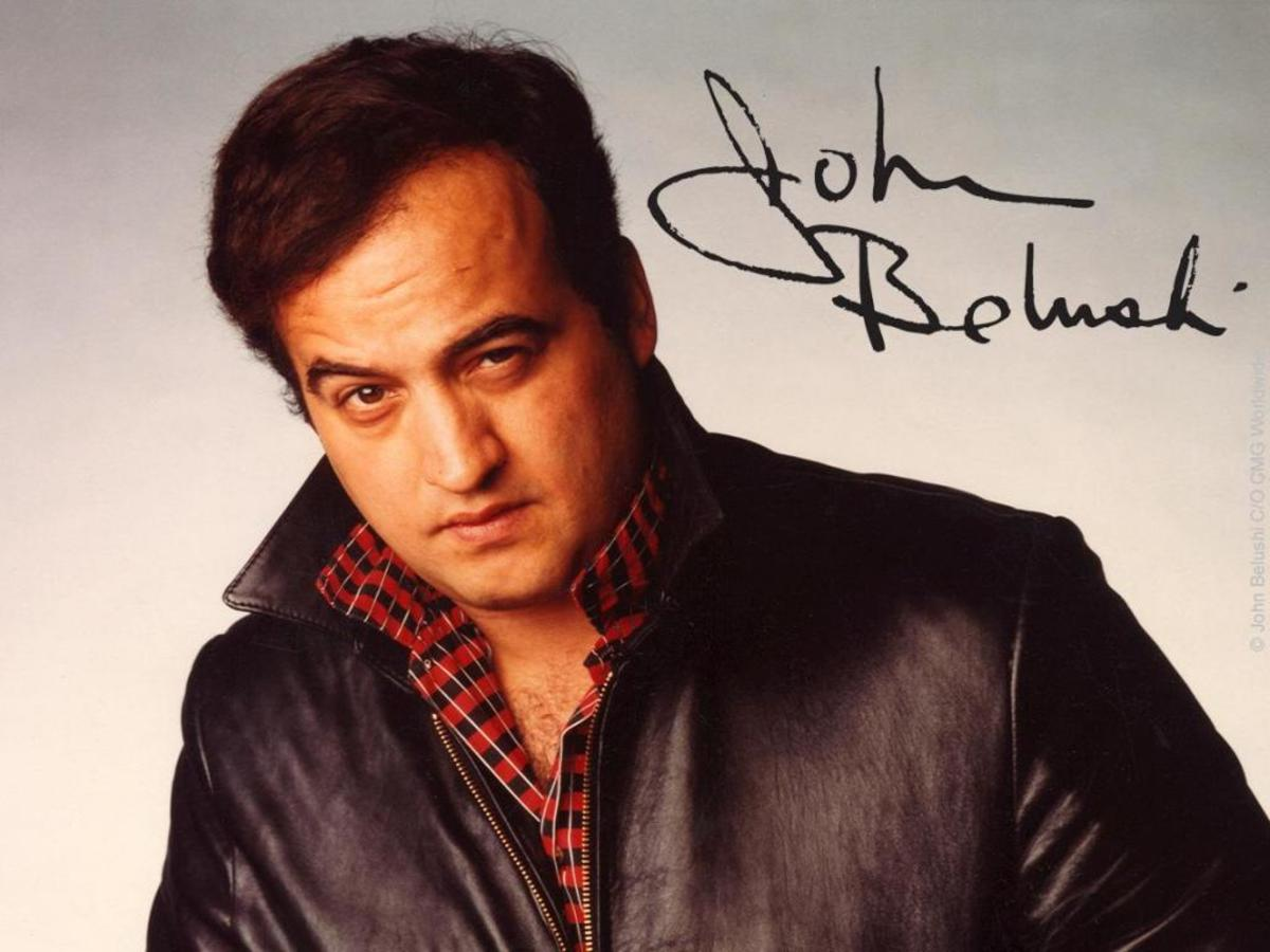 Image result for john belushi 1982