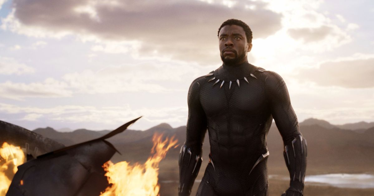 Black Panther without his mask