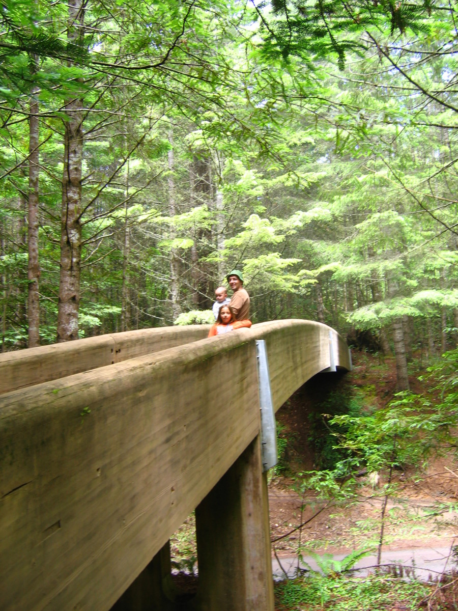 The bridge to the entrance of the interpretive trail leads to an area that is well-preserved and easy to traverse.