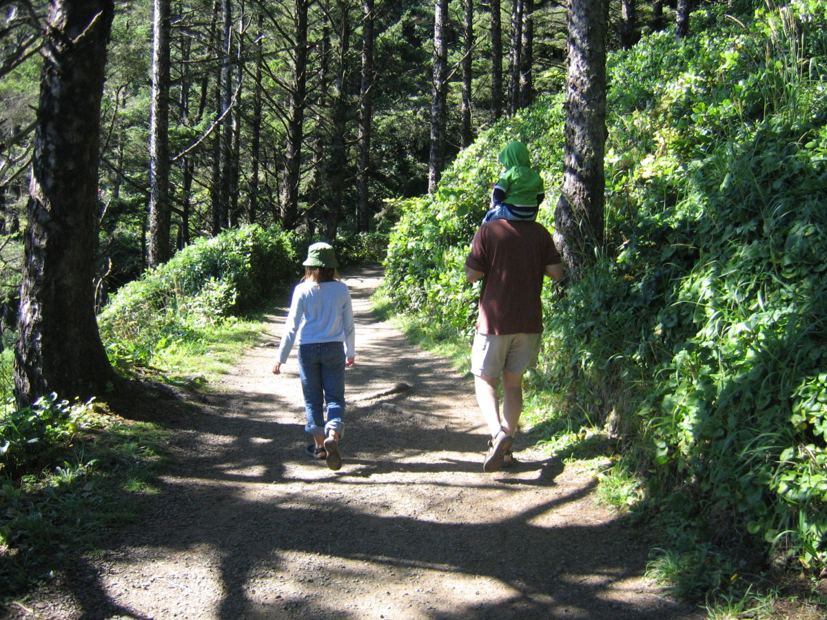 The path to the Heceta Head Lighthouse began at Devils Elbow beach and made its way up the steep hill. The hike was easy enough for us to carry a toddler on our shoulders.