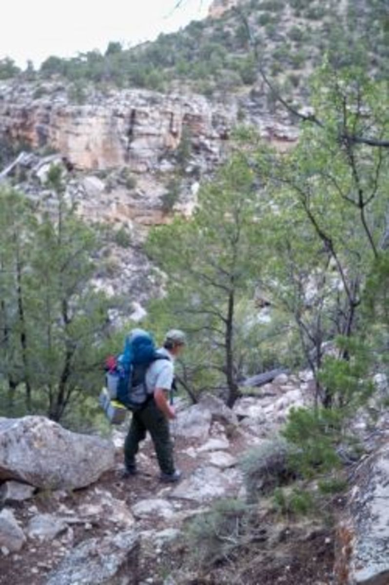 Hiking The South Bass Trail