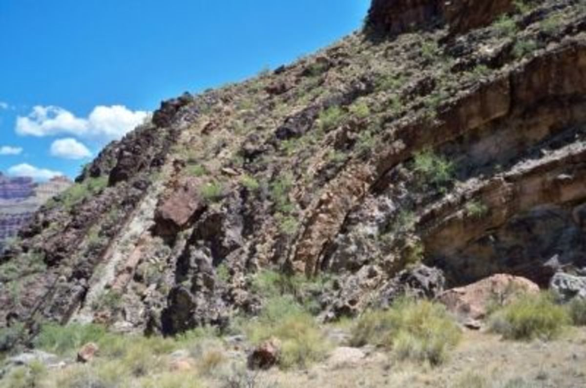 A dramatic folding of the rock layers, seen here as we approach the Tonto platform