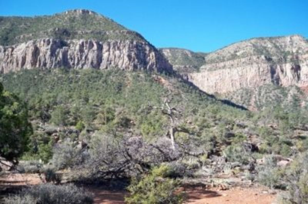 A view of the rim from the Esplanade, after hiking 1.3 miles and descending 1,300 verticle feet