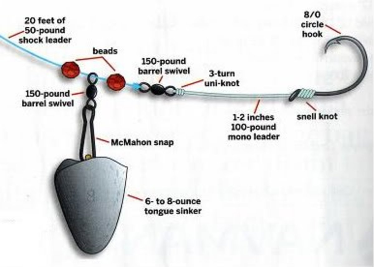 A rig for large red drum