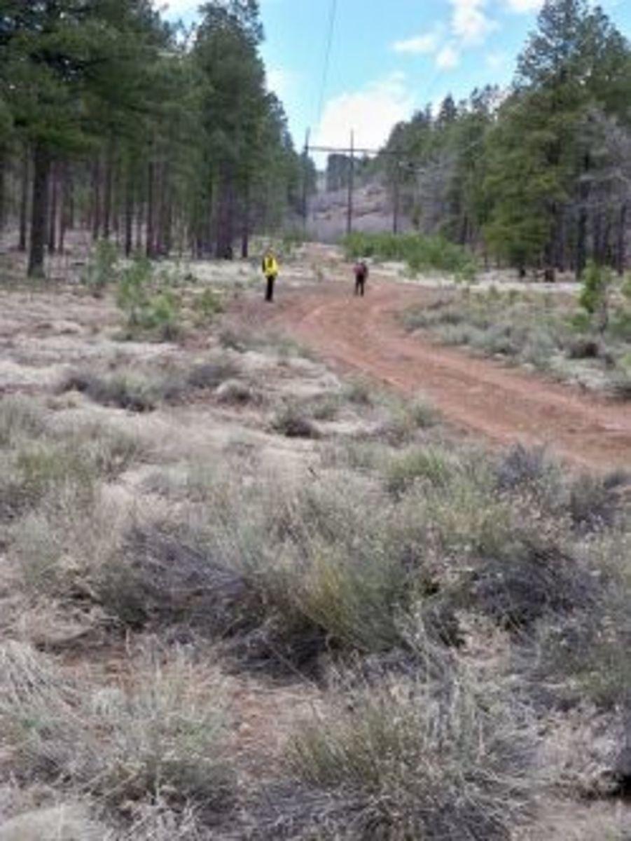Alternative Land Navigation Training