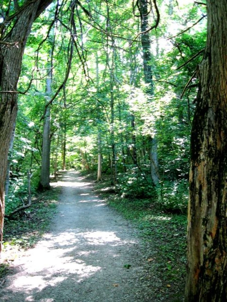 Mounds State Park And The Mound Builders
