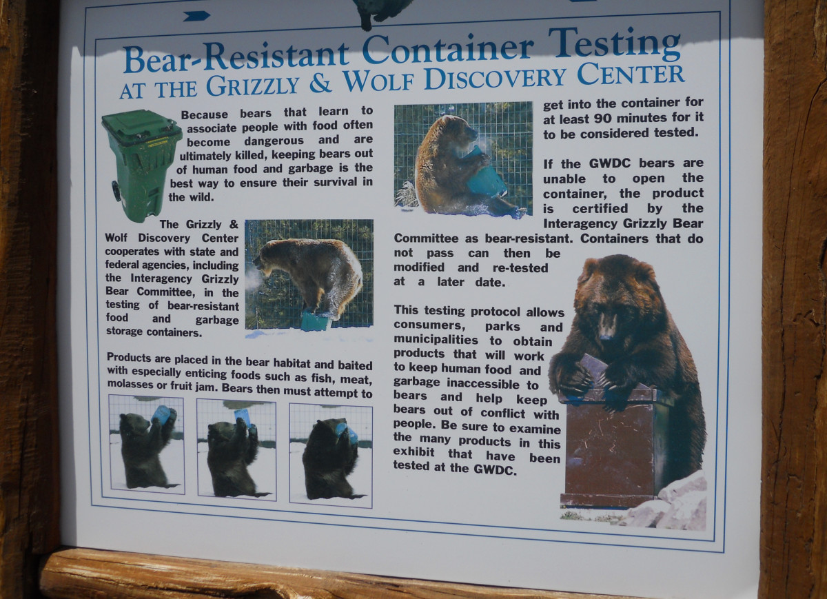 "Grizzly Wolf and Discovery center located in West Yellowstone tests ""bear-proof"" containers."