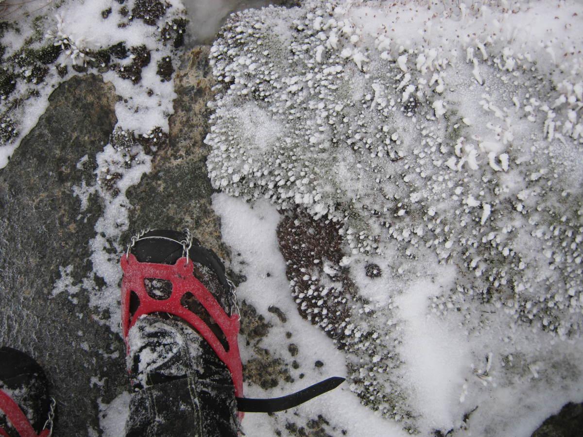Tread carefully to avoid damage to the fragile arctic alpine environment.