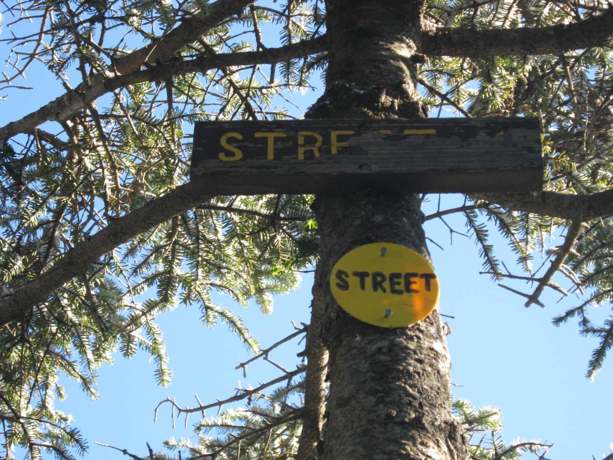The summit signs on Street Mtn.