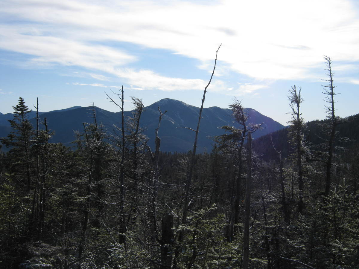 The view from Street Mountain