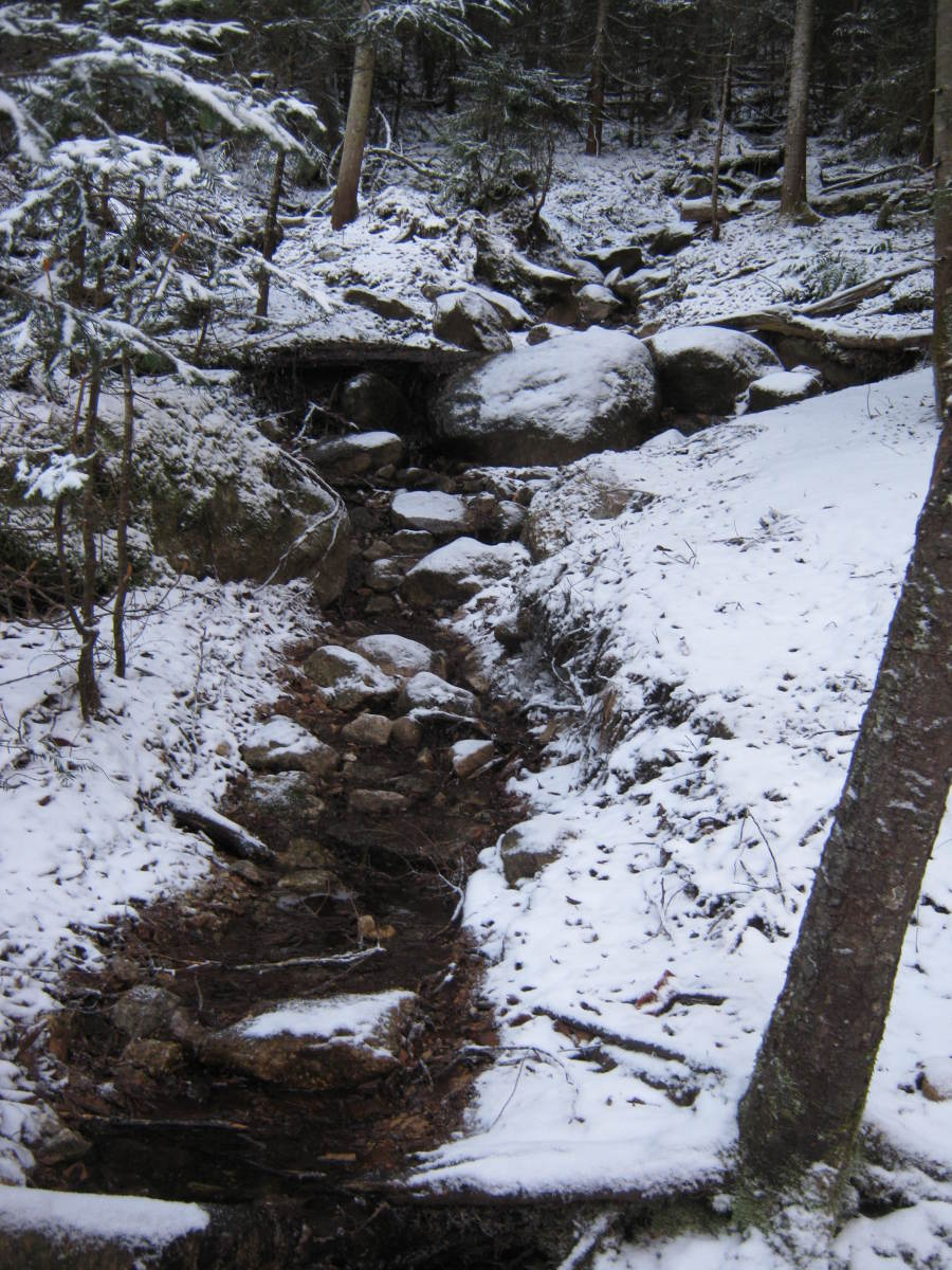 Compared to other High Peaks, the Street and Nye herd path is a relaxing ascent.