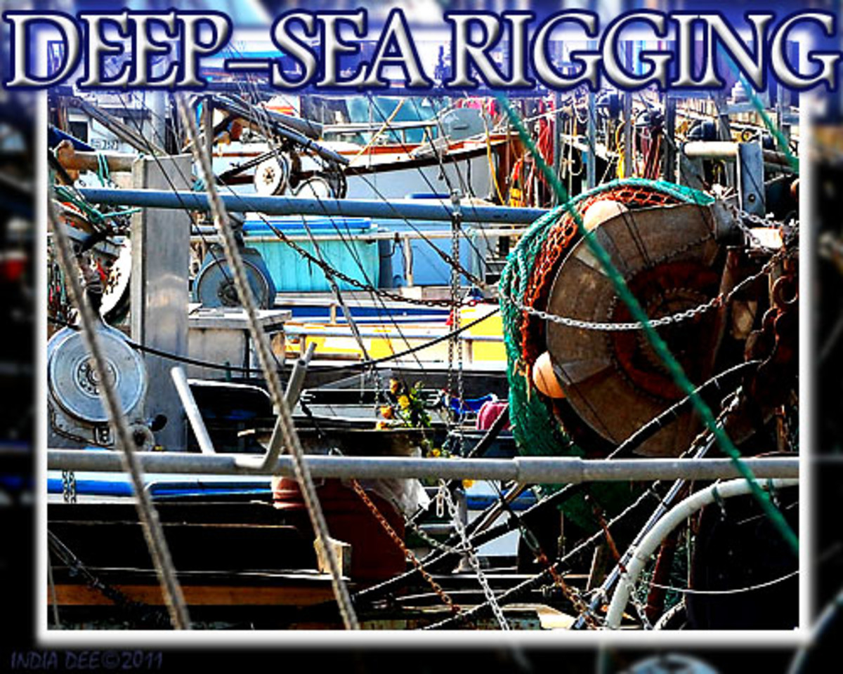 "Deep-sea fishing charter boats have a remarkable amount of ropes, nets, and gear, that are called ""rigging."""