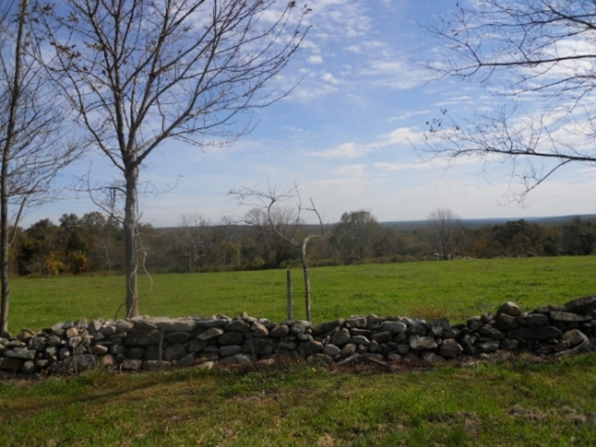 A view from Route 49, looking across farm land toward the hills.