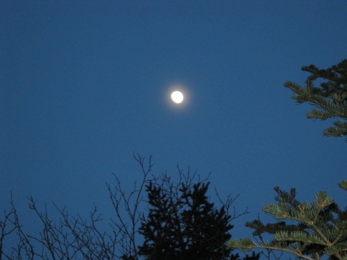 A full, or nearly full, moon is fantastic at illuminating the night landscape.