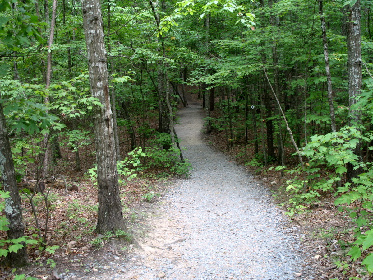 tips-for-hiking-trails