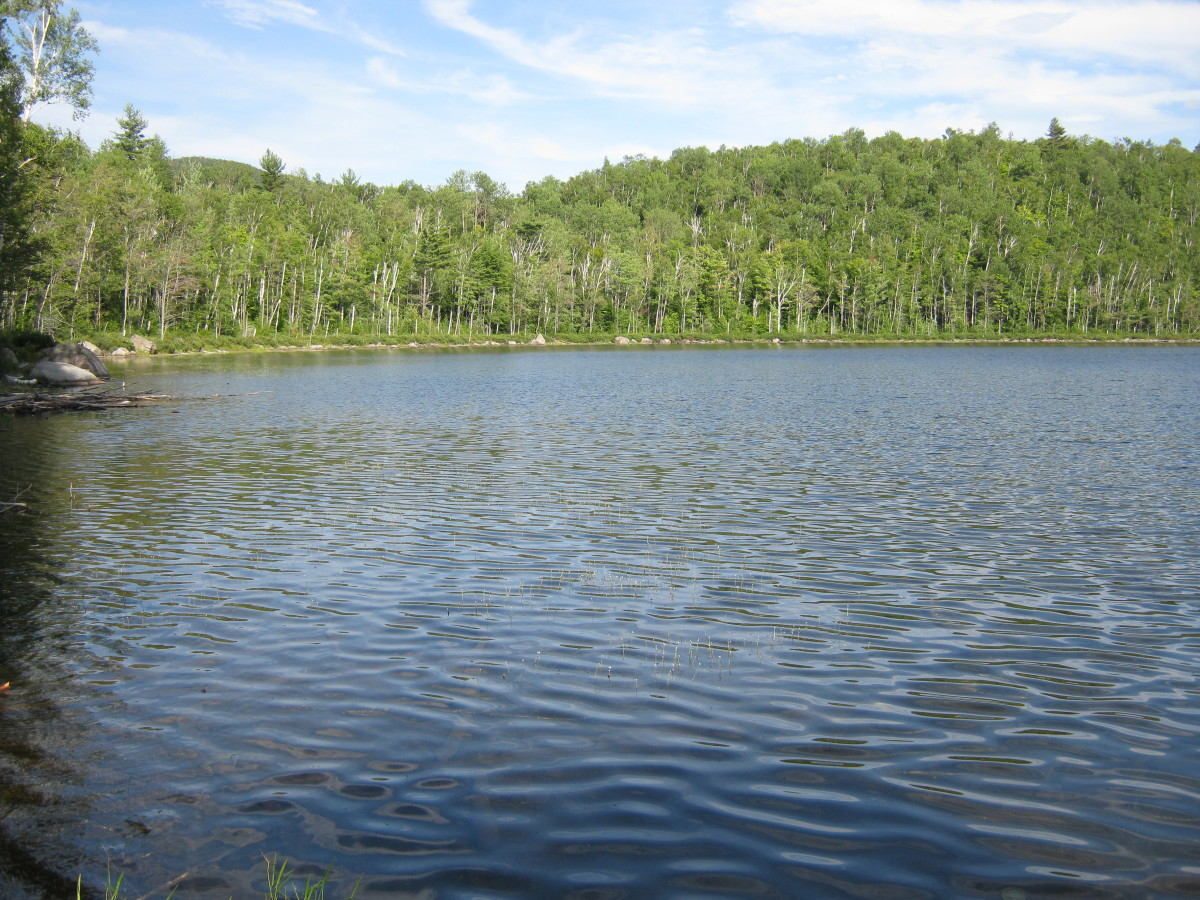 Less than a mile from the road, Round Pond is a popular campsite.