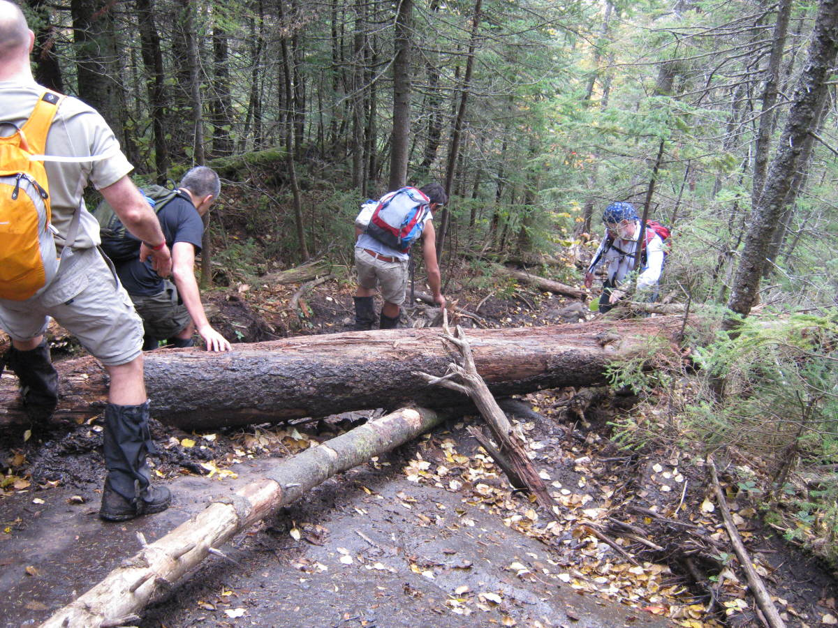 Watch your step!  Falls are a major cause of hiking injuries.