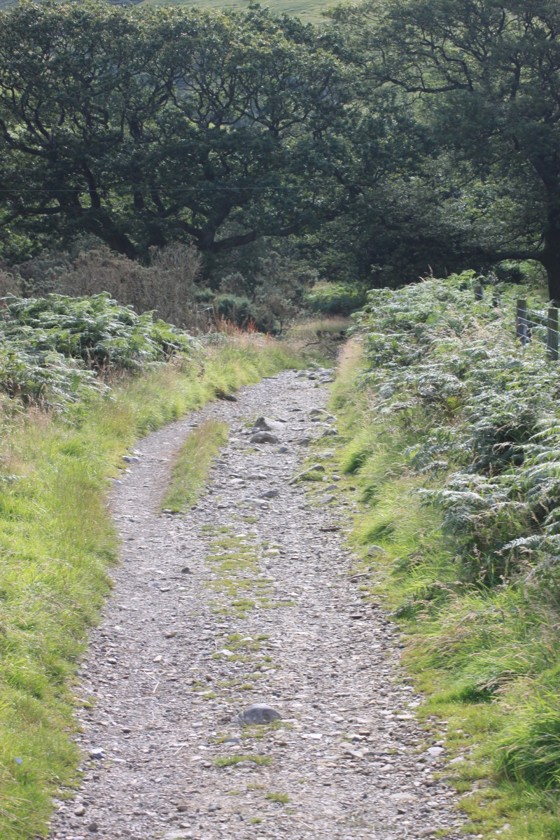 The rugged footpath along Lingmell Gill is alive with the noise of rushing water coming down from the Scafell Massif
