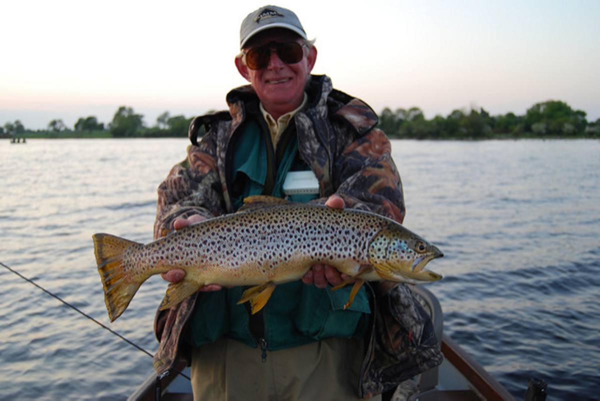 A seriously impressive Brown Trout. This one's worth bragging about!