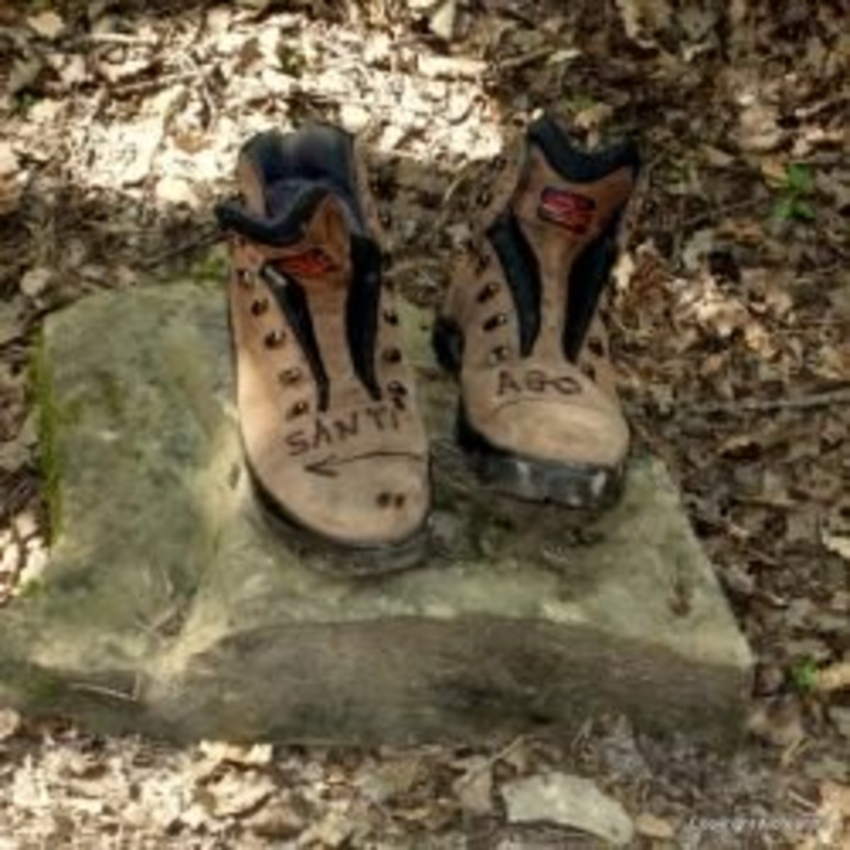 A pair of abandoned boots by the forest path leading to Zubiri