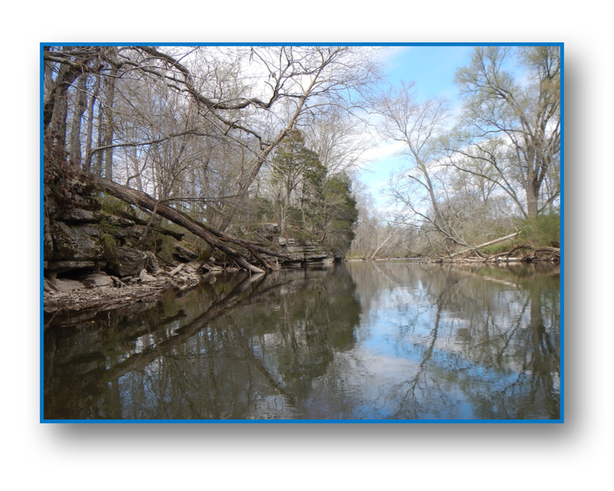 The beautiful scenery and quiet solitude makes floating the Duck River a most pleasurable exercise.