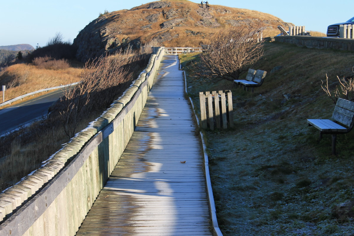 The Boardwalk Section of Lookout Trail on a Frosty November Morning.