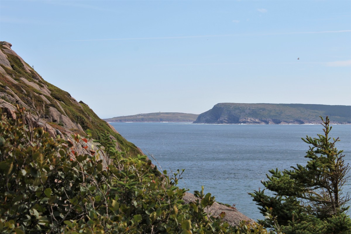 Looking Out From the Northhead Trail Toward Cape Spear