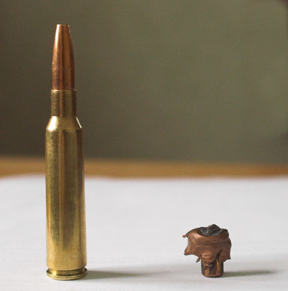 6.5x55mm bullet recovered from moose