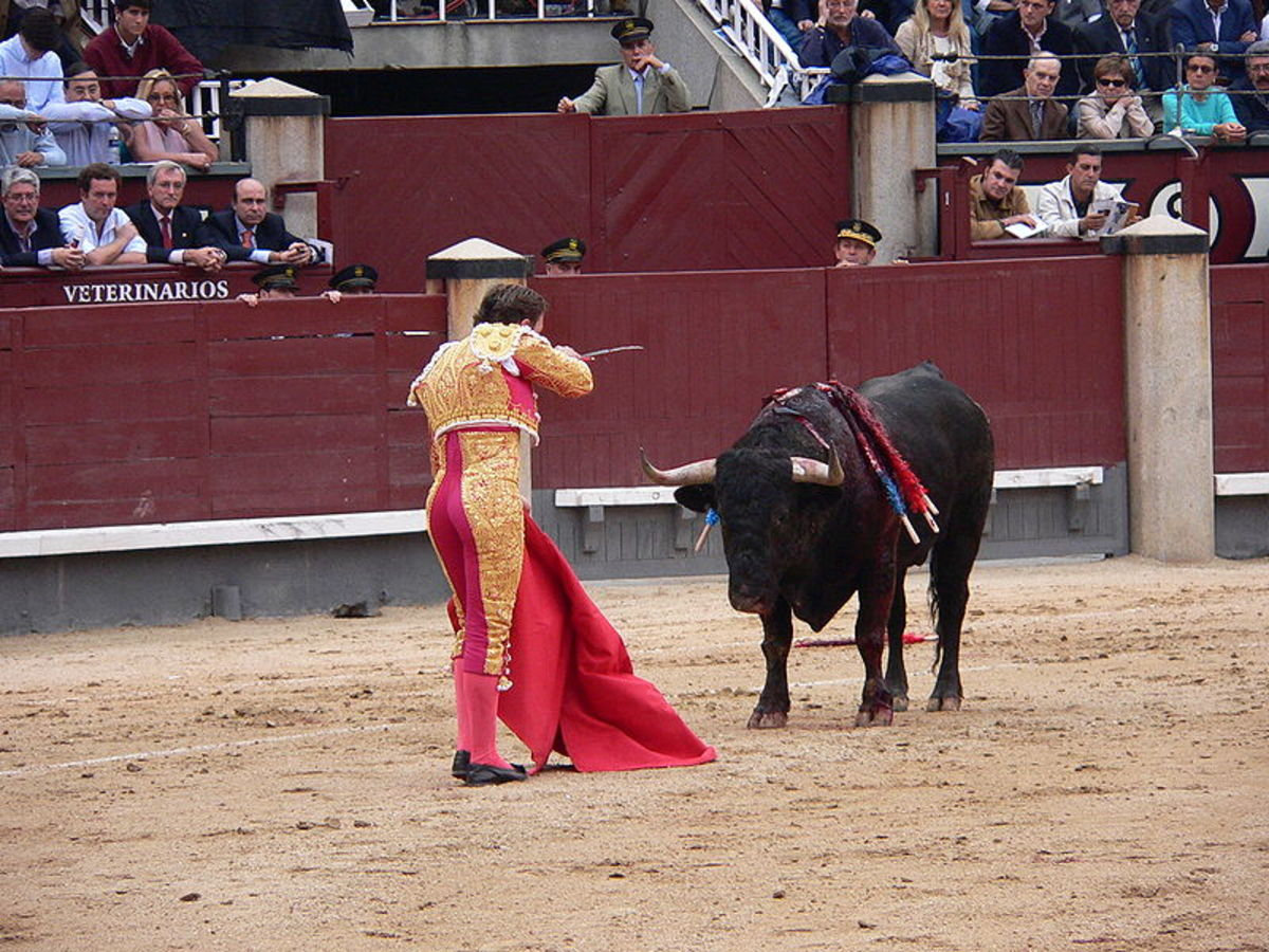 Arguments for and against bullfighting: Matador with bull.  Countries which have some sort of bullfighting as a traditional spectacle include: Spain, Portugal, southern France, Mexico, Ecuador, Peru, Colombia, Venezuela, and the Philippines.