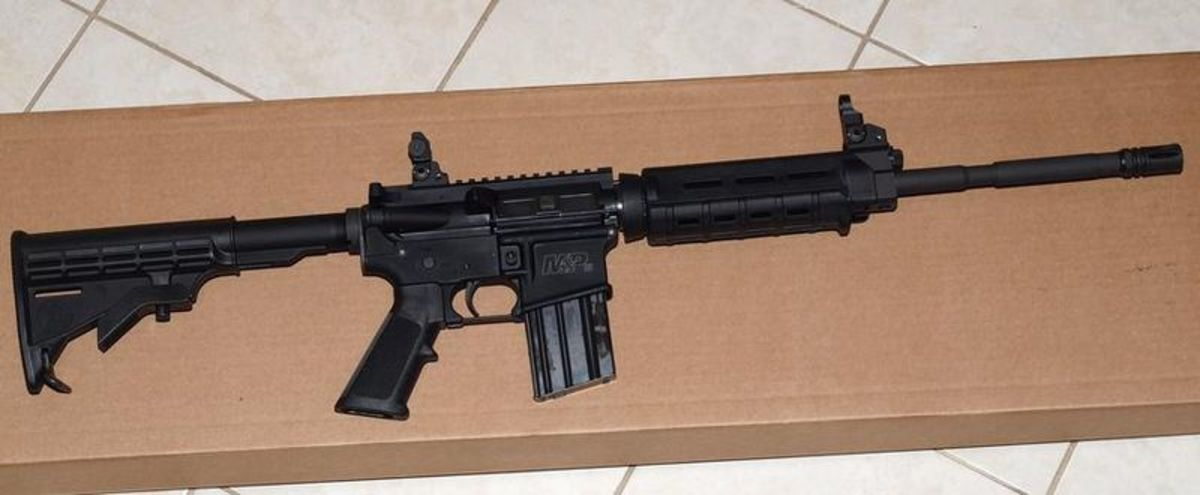 This AR has a flat top receiver and gas block.  The front and rear sights are easily removed to allow optical sight installation.
