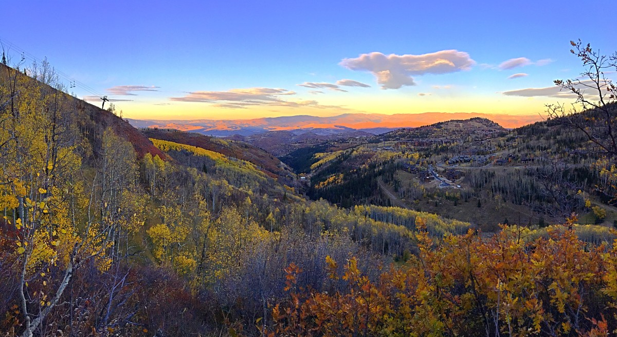 Flecks of gold cover the Wasatch Back along the Mid-Mountain Trail