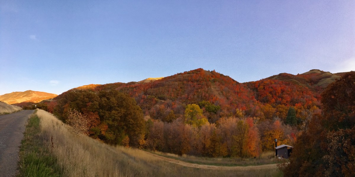 View from City Creek Canyon Trail of the changing colors