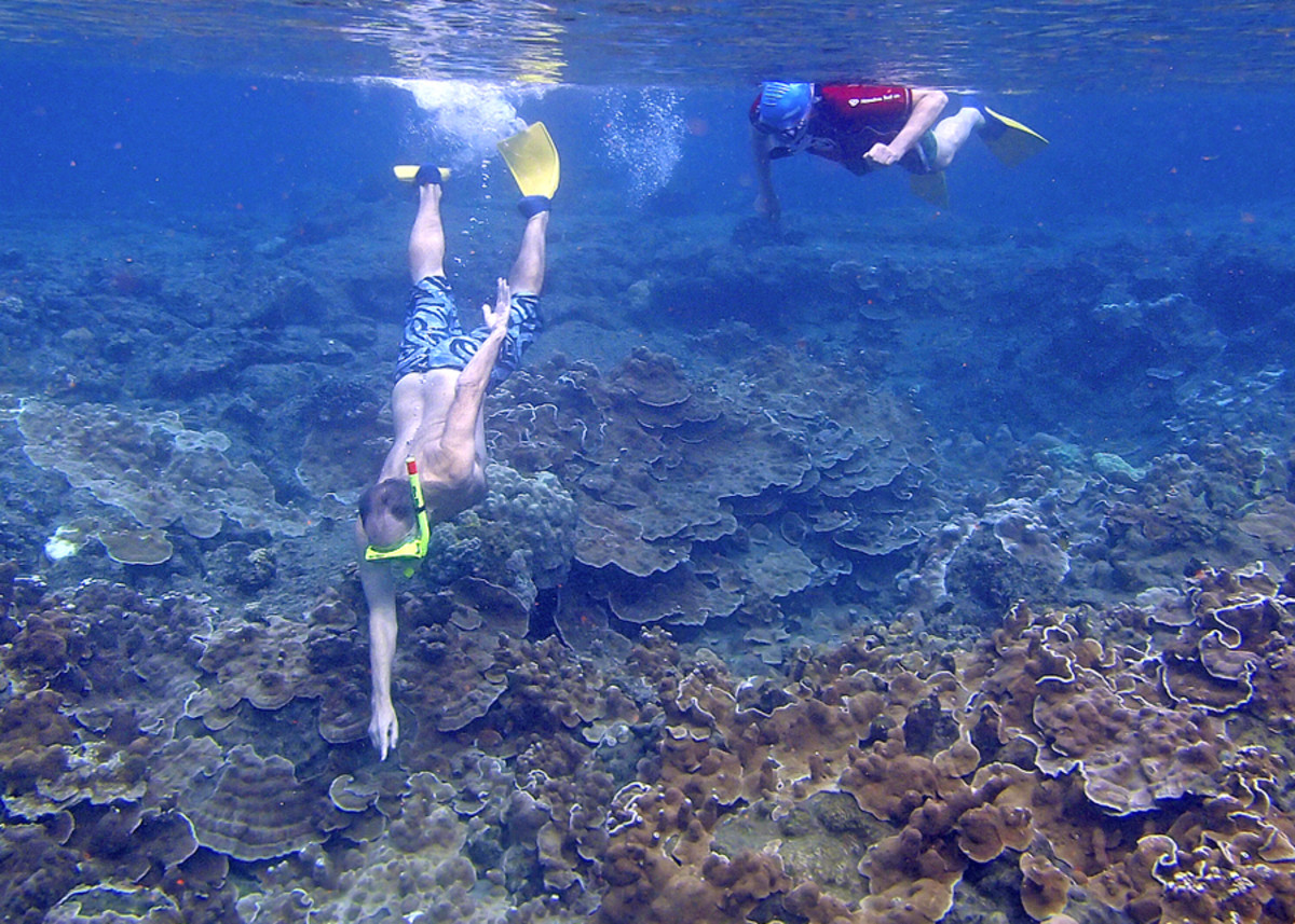 Snorkelers enjoy clear, good visibility water.
