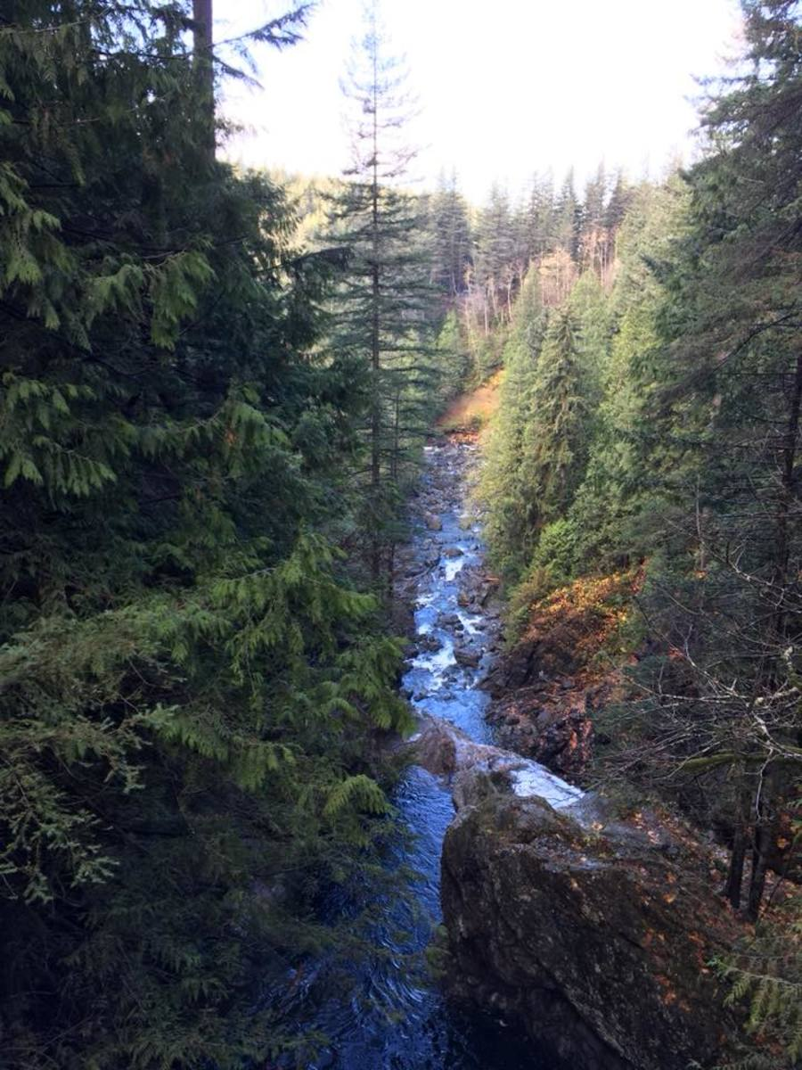 Beautiful view of the Snoqualmie River from up by the falls