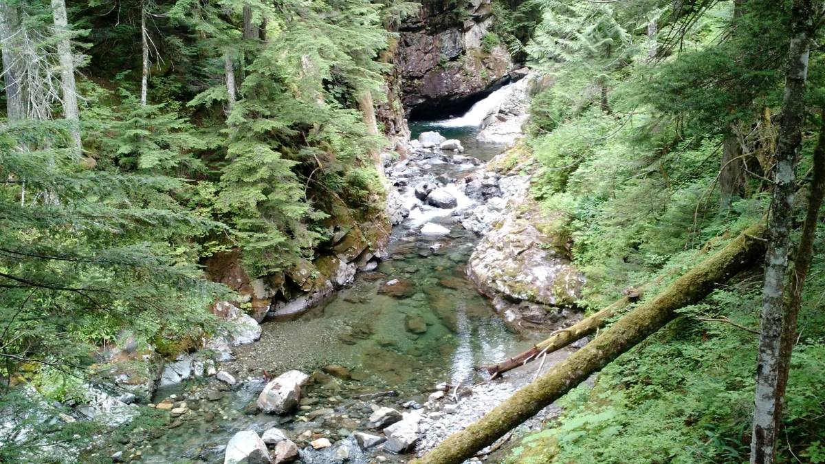 The water at Denny Creek is so clear